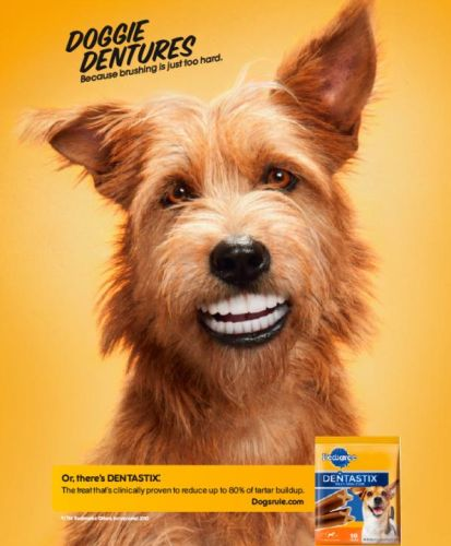 http://www.pedigree.com/oralcare/default.aspx